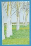 tableau paysages paysage mont arbres nuage blanc : PEUPLIERS