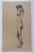dessin nus modele vivant nu homme naturel : homme debout