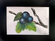 tableau fruits fruit vert rosee branche : 3 fruits
