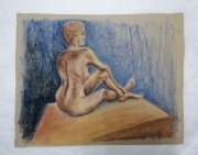 tableau nus modele vivant femme nu pastels : femme assise dos 3/4