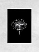 art numerique fleurs fleur bouche bisous nature : Affiche BOUCHE - Illustration