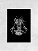 art numerique animaux mer fleur plage coquillages : Affiche HOMARD - Illustration