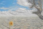 dessin paysages desert secheresse fleur espoir : Hope