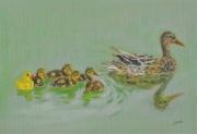 dessin animaux canard animaux caneton plastique : Duck duck duck