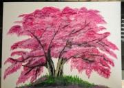 tableau nature morte nature arbre : Arbre  fleuri
