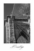 photo architecture new york pont usa architecture : New-York