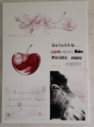 tableau animaux ane cerise fleurs de cerisier : Griotte