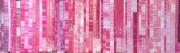 mixte abstrait collage abstrait rose pink : Monochrome rose
