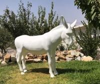 âne blanc