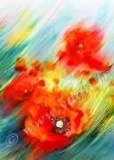 art numerique fleurs coquelicot fleur : Reproduction image d'art Creation  Ydan Affiche FLEUR COQUE