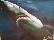 tableau animaux requin poisson figuratif encadre animal : requin