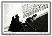 photo villes terrasse chat repos confinement : Je rentre chez moi...