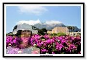 photo personnages femme collines mer fleurs : CAPRI MARINA 2