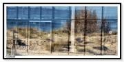 photo villes fermeture nature plage confinement : Confinée...