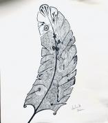 dessin autres encre chine plume amerindien : Encre de Chine