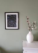 tableau fleurs commande cactus succulentes decoration : Succulente