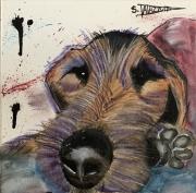 tableau animaux chiens animaux caricature animaux drole : Une vie de chiens