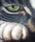 tableau animaux oeil poils patte zoom : Pensif