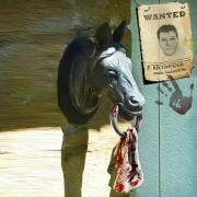art numerique scene de genre photo montage surrealisme psychopathe chevaux : PUR - SANG...