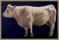 vache sur bleu foncé