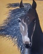 tableau animaux cheval noir vent jaune : cheval noir