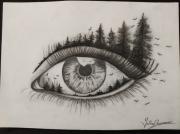 dessin : Oeil Nature'elle