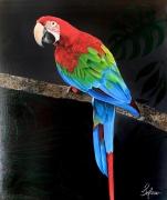 tableau animaux perroquet nature couleurs brazil : Cockatoo