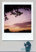 photo paysages : Color Explosion