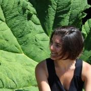 site artistes - Amélie Durand