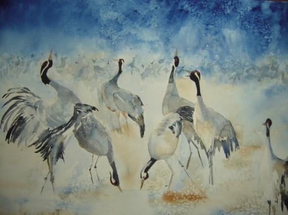 TABLEAU PEINTURE oiseaux danse Animaux Aquarelle  - danse nuptiale