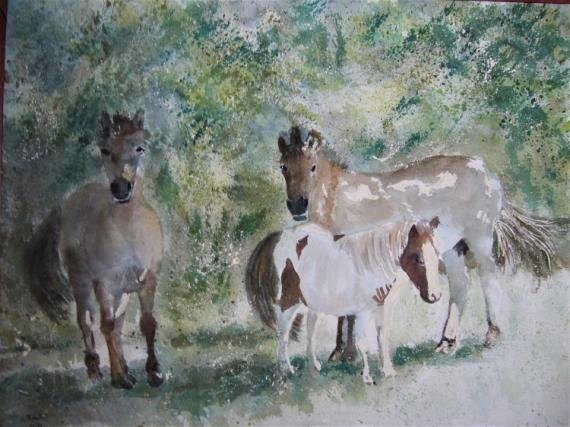 TABLEAU PEINTURE impressionnisme chevaux charente maritime Animaux Aquarelle  - poneys