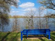 photo paysages banc eau lac arbres : Un banc au bord de l'eau