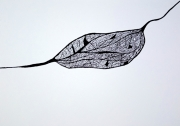 dessin abstrait : My Heart