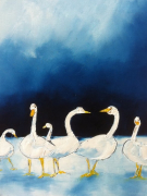 tableau animaux oies neige glace : Oies blanches