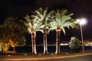 photo nice nice de nuit photo nocturne : Nice, de nuit.