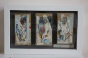 tableau fleurs oeillet fleur dessin techniques mixtes : Cyanus Segetum