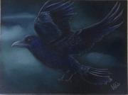 dessin animaux : Le corbeau
