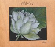 dessin fleurs : Lotus