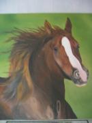 tableau animaux : Cheval au galop