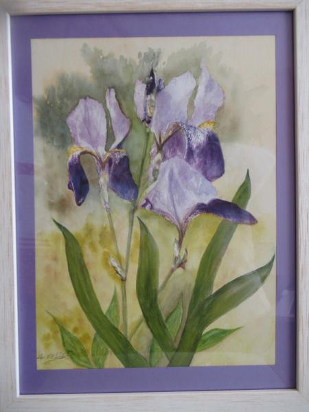TABLEAU PEINTURE Fleurs Aquarelle  - Bouquet d'iris