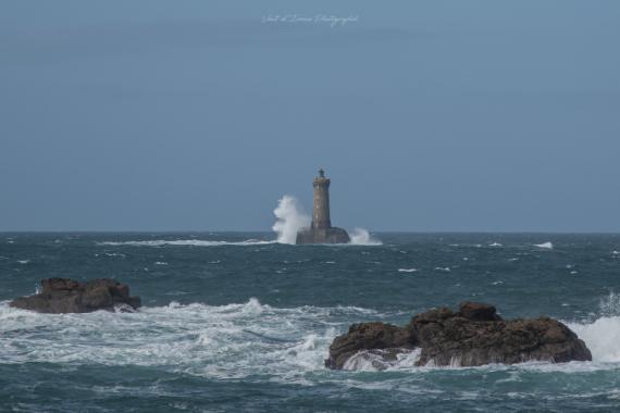 PHOTO mer phare du four iroise porspoder Marine  - le roi lion et pumbaa au phare du Four