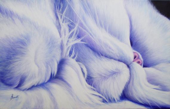 TABLEAU PEINTURE chat blanc animaux violet Animaux Acrylique  - Sieste persane