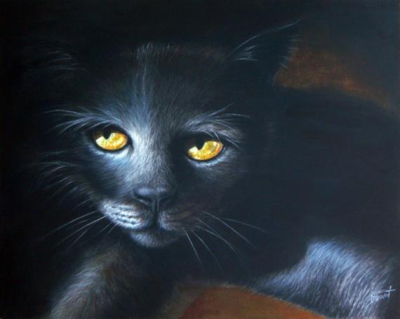 TABLEAU PEINTURE chat pastel animaux Animaux Pastel  - Dans la pénombre