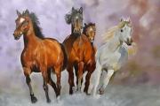 tableau animaux chevaux animaux : Les chevaux