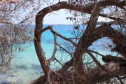 photo paysages : Robinson Crusoé