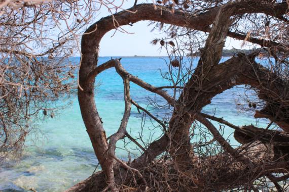 PHOTO Paysages  - Robinson Crusoé