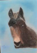 tableau animaux : Marius