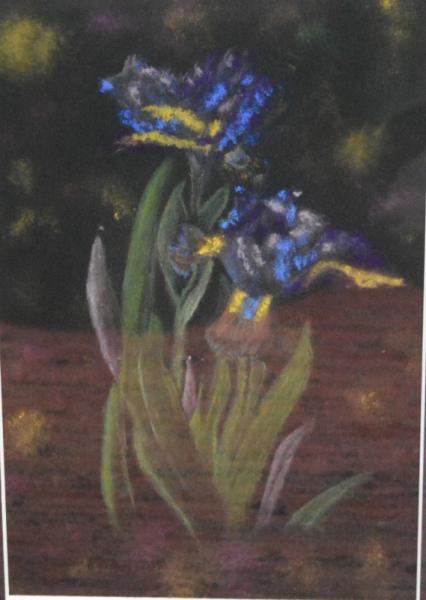 TABLEAU PEINTURE Pastel  - Iris