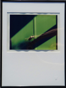 photo photo ab studio unique 11 : Vert l'ombre et la lumière