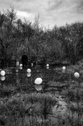 photo paysages noir et blanc paysage photographie photographie art personnage : I can fly 3